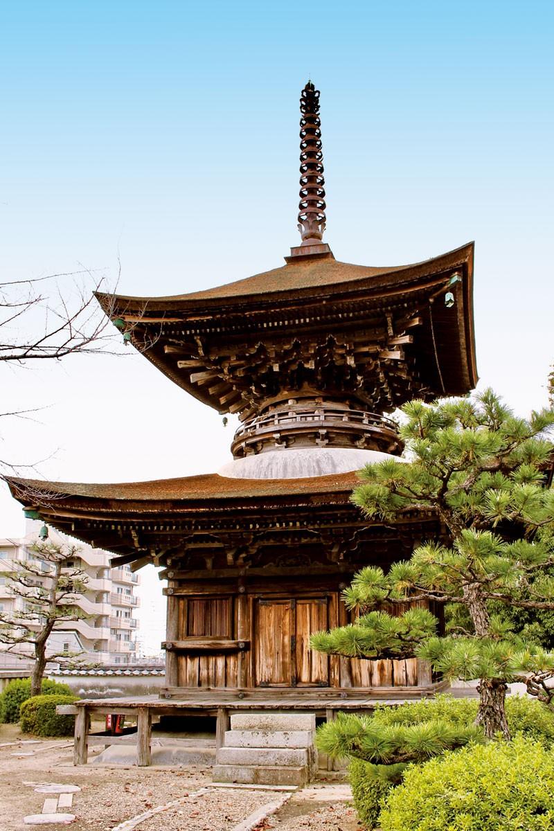 大樹寺を巡る   観光   みかわこ...